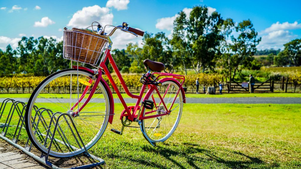 basket-bicycle-bike-805303